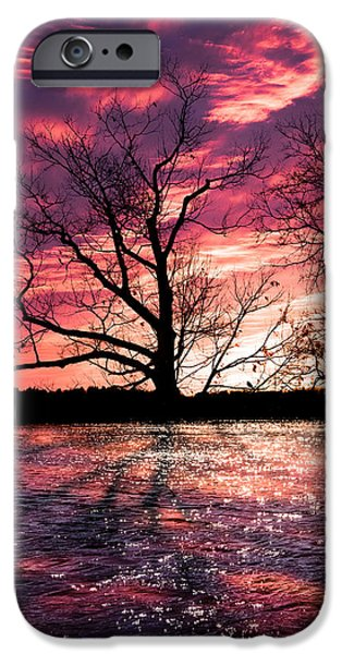 iPhone Cases - Memory Of Trees iPhone Case by Bob Orsillo