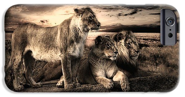 Power Animal iPhone Cases - Menage A Trois iPhone Case by Joachim G Pinkawa