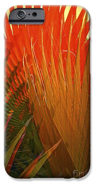 Tropical Plant iPhone Cases - Mexican Palm iPhone Case by Gwyn Newcombe