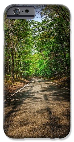 Asphalt iPhone Cases - Mi Tunnel of trees iPhone Case by LeeAnn McLaneGoetz McLaneGoetzStudioLLCcom