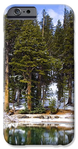 Snow Scene iPhone Cases - Mid Day Melt iPhone Case by Chris Brannen
