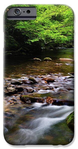 Tennessee River iPhone Cases - Middle Prong Little River spring iPhone Case by Thomas Schoeller