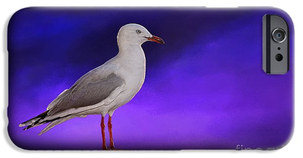 Seagull iPhone Cases - Midnight Seagull by Kaye Menner iPhone Case by Kaye Menner