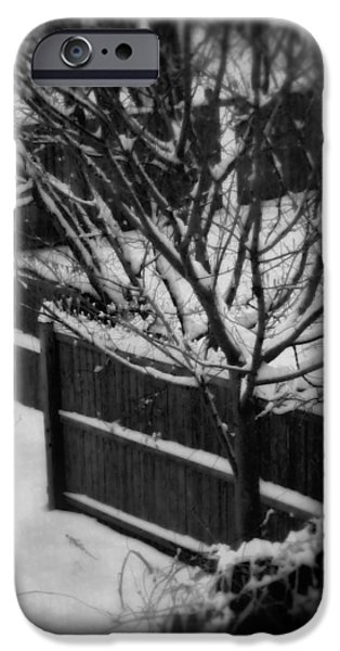 Snowy Day iPhone Cases - Midwinters Dream iPhone Case by Susan Maxwell Schmidt