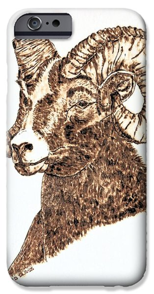 Water Colors Pyrography iPhone Cases - Mighty Bighorn Sheep iPhone Case by Pat Sloss