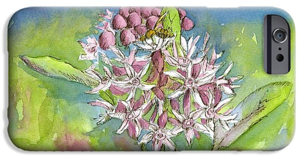 Flora Drawings iPhone Cases - Milkweed Honey Bee iPhone Case by Cathie Richardson