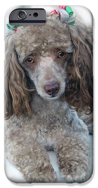 Puppy Digital Art iPhone Cases - Mimzy Doesnt Like The Groomers iPhone Case by Sabrina Wheeler