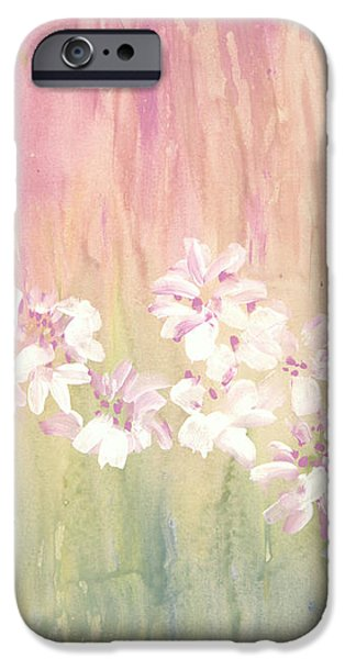 Mirage iPhone Case by Don  Wright
