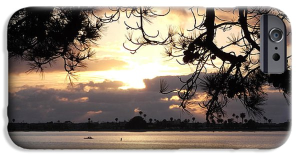 Tree Art Print iPhone Cases - Mission Bay San Diego iPhone Case by Alan M Thwaites