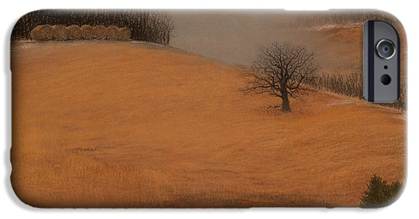Winter Storm Pastels iPhone Cases - Missouri Winter iPhone Case by James Beasley