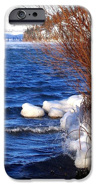 Willow Lake iPhone Cases - Mist On Kalamalka iPhone Case by Will Borden