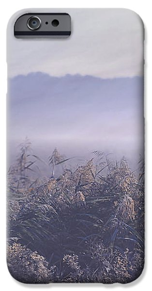 Fog Mist iPhone Cases - Misty Fields iPhone Case by Jenny Rainbow