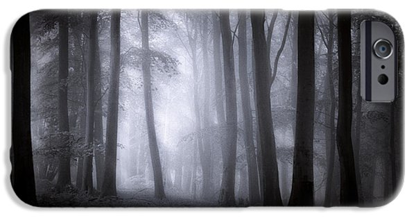 Fall iPhone Cases - Misty Forest iPhone Case by Ian Hufton