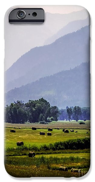 Forest iPhone Cases - Misty Harvest Mountain Morning iPhone Case by Janice Rae Pariza
