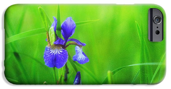 Mist iPhone Cases - Misty Iris iPhone Case by Reflective Moment Photography And Digital Art Images