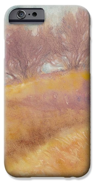 Autumn Landscape Mixed Media iPhone Cases - Misty Landscape II iPhone Case by Tracie Thompson