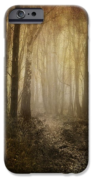 Mist iPhone Cases - Misty Woodland Path iPhone Case by Meirion Matthias