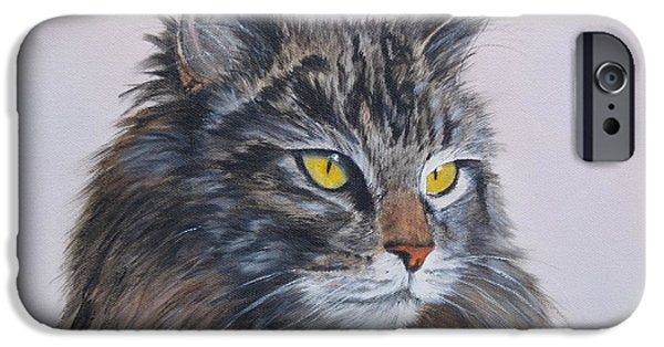 Recently Sold -  - Maine iPhone Cases - Mitze Maine Coon Cat iPhone Case by Vicky Path
