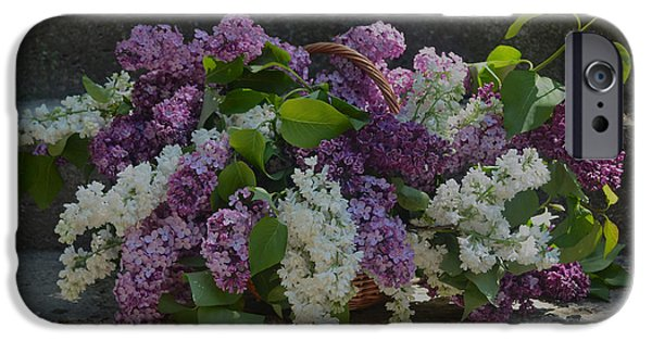 Basket iPhone Cases - Mixed Lilac iPhone Case by Luv Photography