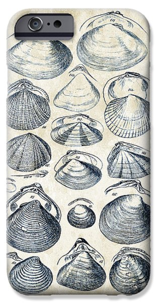 Invertebrates iPhone Cases - Mollusks - 1842 - 05 iPhone Case by Aged Pixel