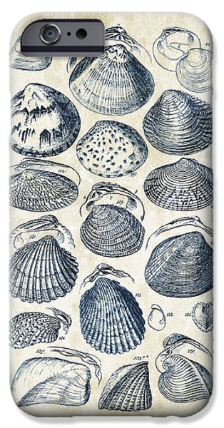 Invertebrates iPhone Cases - Mollusks - 1842 - 06 iPhone Case by Aged Pixel