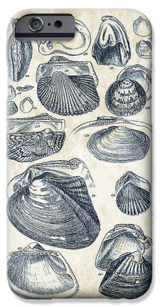 Invertebrates iPhone Cases - Mollusks - 1842 - 07 iPhone Case by Aged Pixel