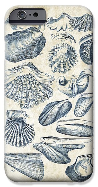 Invertebrates iPhone Cases - Mollusks - 1842 - 09 iPhone Case by Aged Pixel