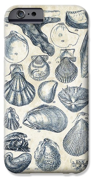 Invertebrates iPhone Cases - Mollusks - 1842 - 10 iPhone Case by Aged Pixel