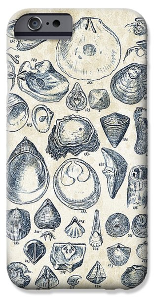 Invertebrates iPhone Cases - Mollusks - 1842 - 11 iPhone Case by Aged Pixel
