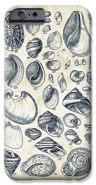 Invertebrates iPhone Cases - Mollusks - 1842 - 13 iPhone Case by Aged Pixel