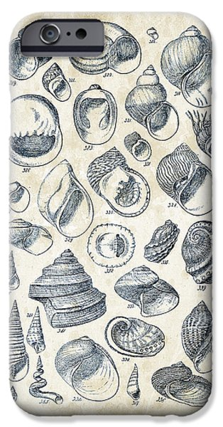 Invertebrates iPhone Cases - Mollusks - 1842 - 15 iPhone Case by Aged Pixel