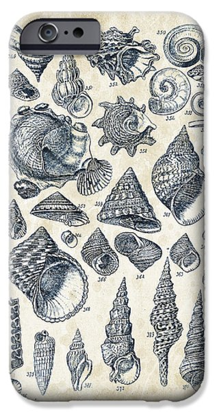 Invertebrates iPhone Cases - Mollusks - 1842 - 16 iPhone Case by Aged Pixel