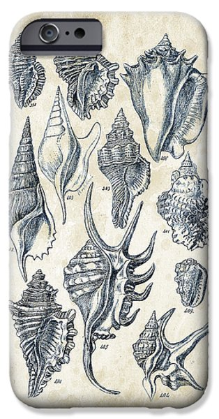 Invertebrates iPhone Cases - Mollusks - 1842 - 18 iPhone Case by Aged Pixel