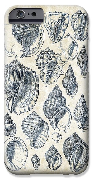 Invertebrates iPhone Cases - Mollusks - 1842 - 19 iPhone Case by Aged Pixel