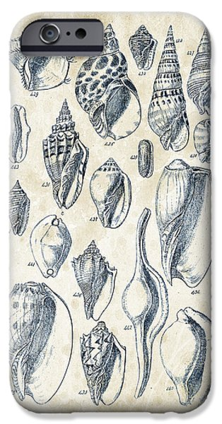 Invertebrates iPhone Cases - Mollusks - 1842 - 20 iPhone Case by Aged Pixel