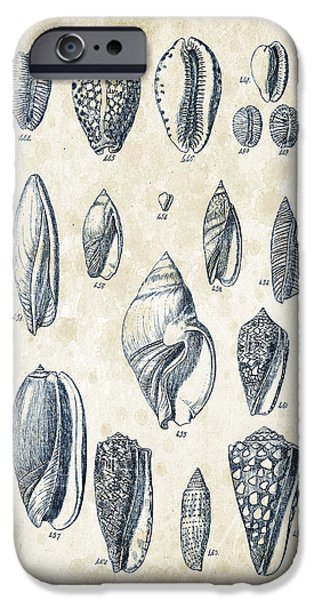 Invertebrates iPhone Cases - Mollusks - 1842 - 21 iPhone Case by Aged Pixel
