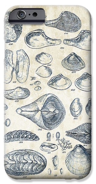 Invertebrates iPhone Cases - Mollusks - 1842 - 24 iPhone Case by Aged Pixel