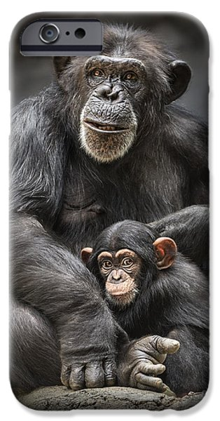 Ape iPhone Cases - Mom and Baby iPhone Case by Jamie Pham