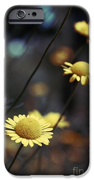 Flower iPhone Cases - Momentum iPhone Case by Aimelle