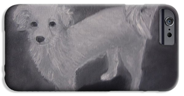Dogs iPhone Cases - Momo iPhone Case by Aurokanya Chattopadhya