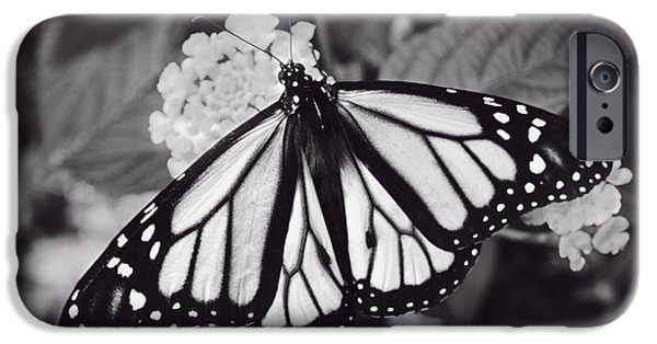 Blue Abstracts iPhone Cases - Monarch Butterfly - Monochrome iPhone Case by F Leblanc