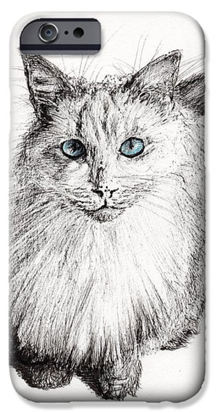 Cat Prints Drawings iPhone Cases - Monty iPhone Case by Vincent Alexander Booth