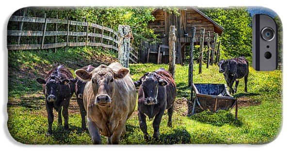 Old Barns iPhone Cases - Moo... iPhone Case by Debra and Dave Vanderlaan