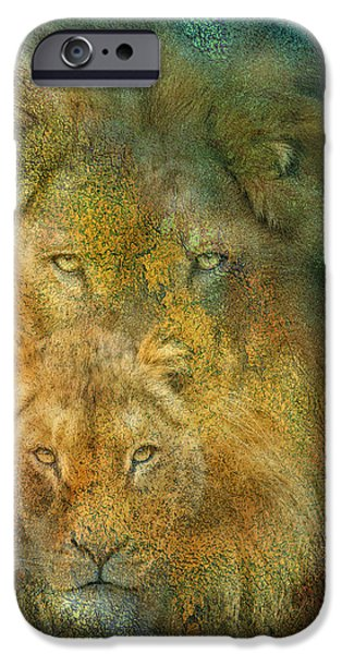 Lion Print iPhone Cases - Moods Of Africa - Lions iPhone Case by Carol Cavalaris