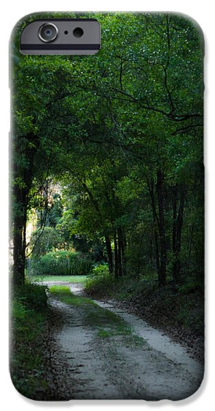 Overhang iPhone Cases - Moody Path iPhone Case by Shelby  Young