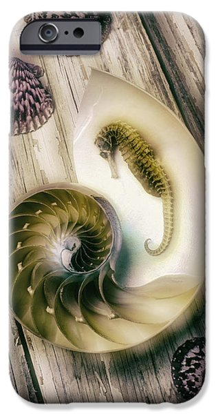 Marine iPhone Cases - Moody Seahorse iPhone Case by Garry Gay