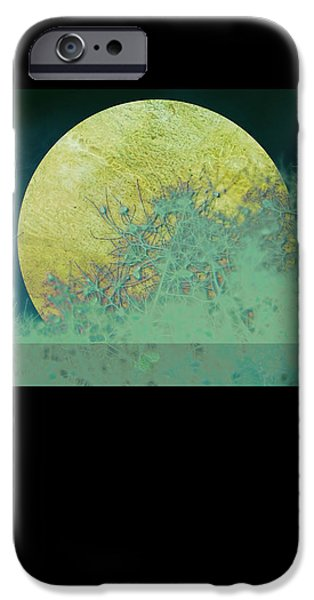 Moon iPhone Cases - Moon Magic iPhone Case by Ann Powell