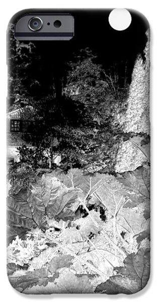 Moon Over Stanley Park iPhone Case by Will Borden