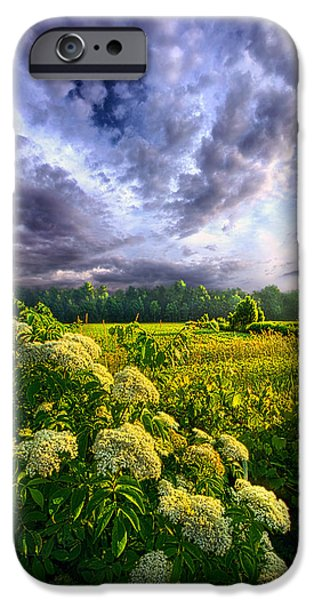 Agriculture iPhone Cases - Morning Creation iPhone Case by Phil Koch