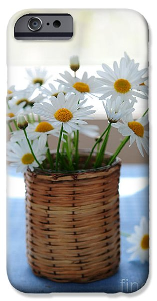 Indoor iPhone Cases - Morning daisies iPhone Case by Elena Elisseeva